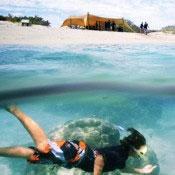Travel-shot-w-diver