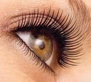 Eyelash-photo